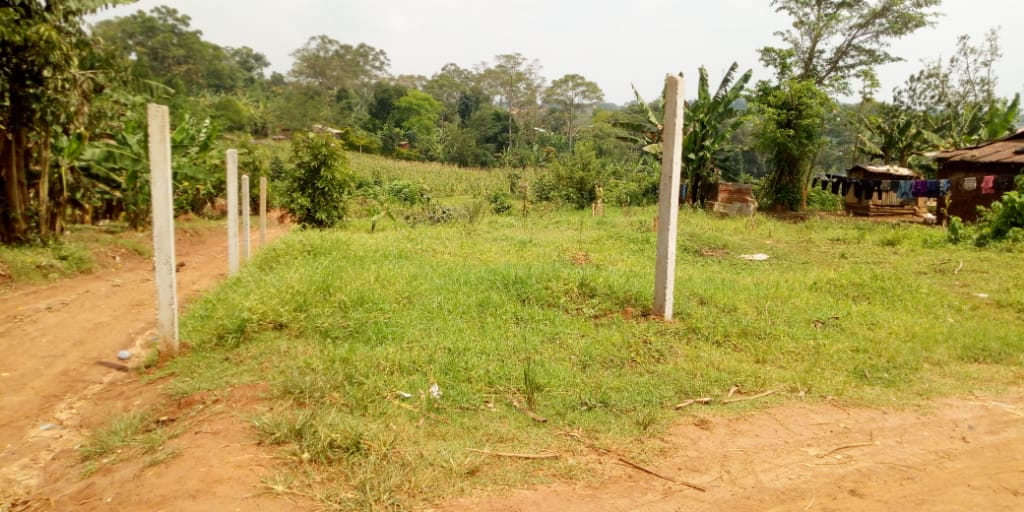 Plot for sale at Jokolera view